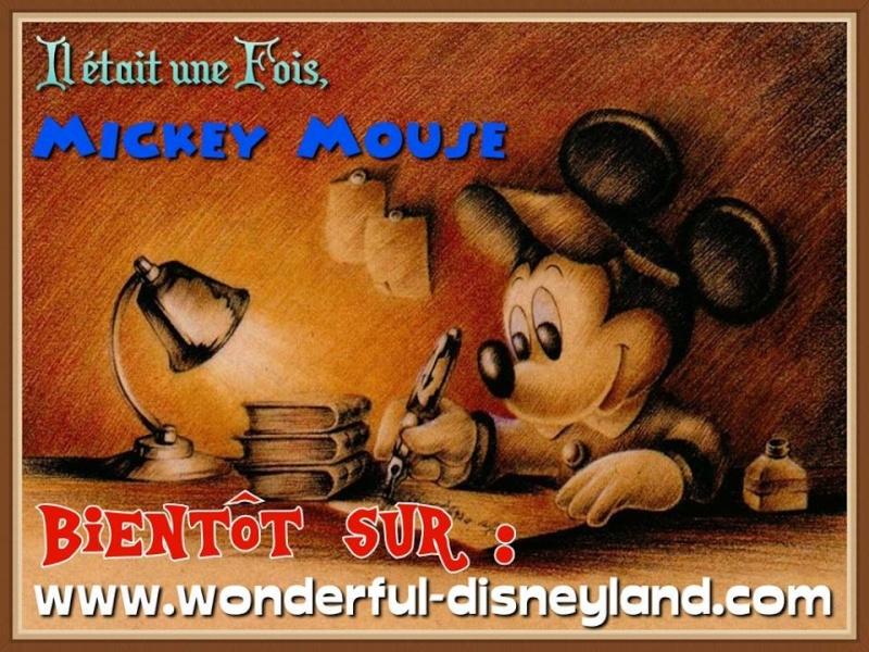 Wonderful Disneyland 11891110