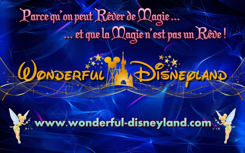 Wonderful Disneyland 1210