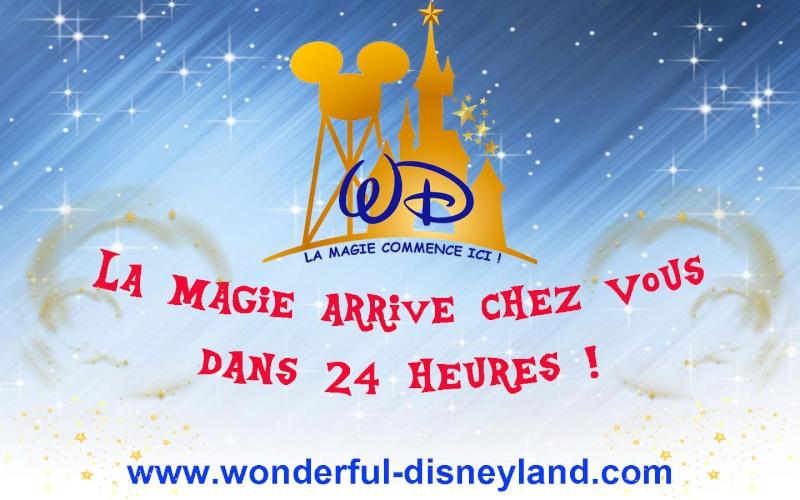Wonderful Disneyland 24h10
