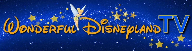 Wonderful Disneyland 3010