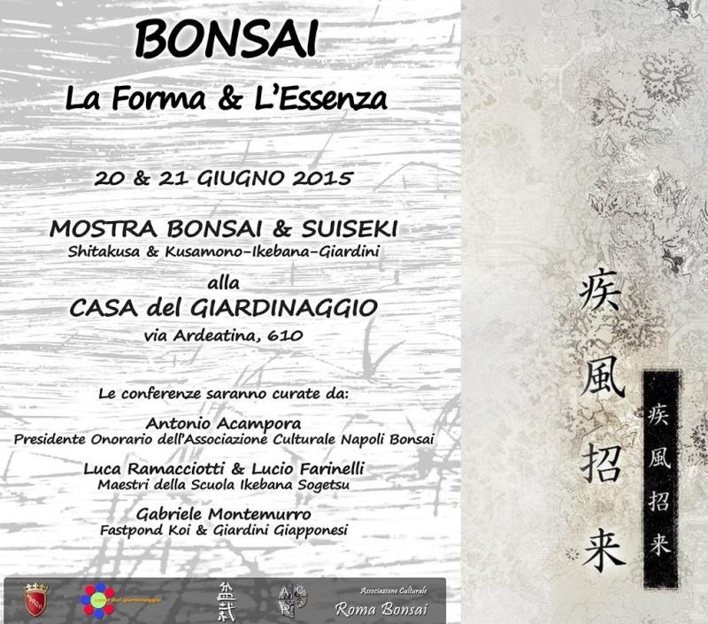 Mostra bonsai e suiseki a Roma. Locand11