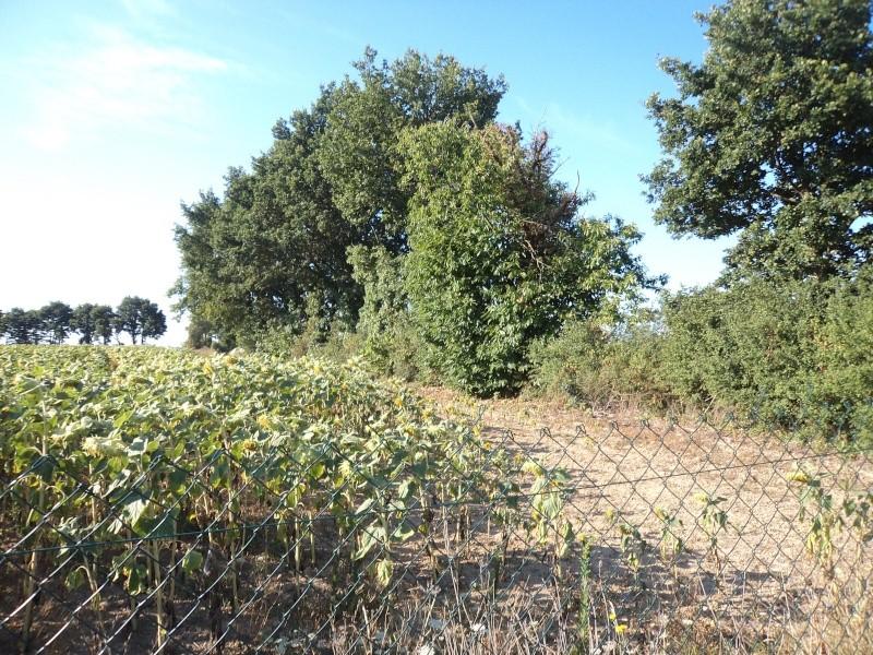 Photos de mon territoire. Dsc01410