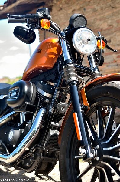 En 883... combien sommes nous sur le Forum Passion-Harley - Page 12 Dsc_1321