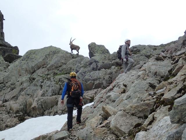 Compte-rendu de la sortie alpinisme Dent de Fenestral et Perrons de Vallorcine P6200015
