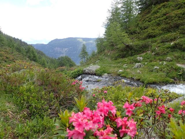 Compte-rendu de la sortie alpinisme Dent de Fenestral et Perrons de Vallorcine P6200025