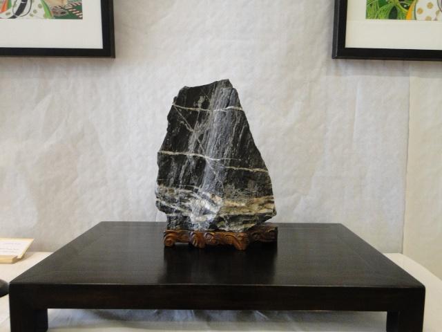 le club émeraude bonsaï  expose le 6 et 7 juin Dsc07817