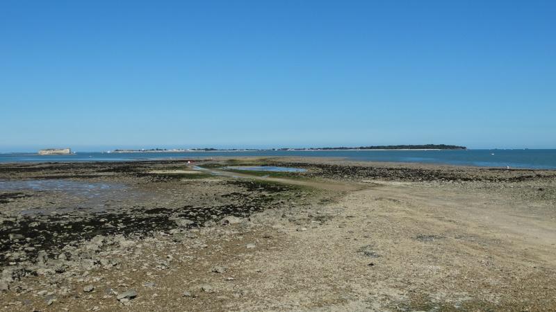 FOURAS en Charente Maritime Dsc02318