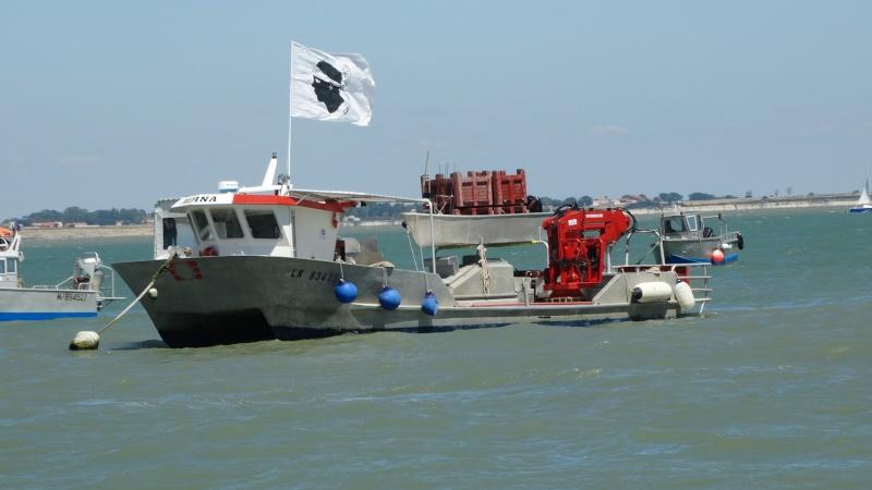 FOURAS en Charente Maritime Dsc02412