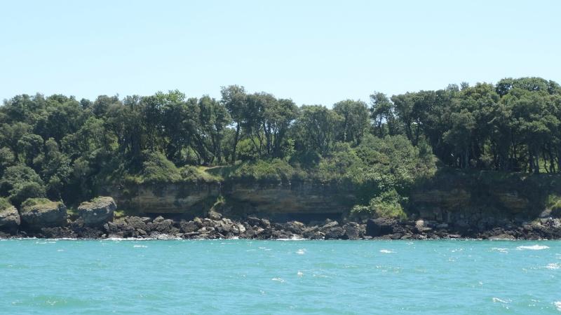 FOURAS en Charente Maritime Dsc02418
