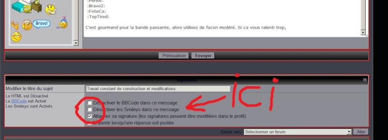 Construction et modifications du forum - Page 2 Exempl11