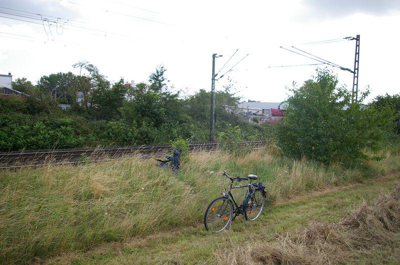 Was die Züge so bewegt ... Fotopu10