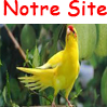 notre site
