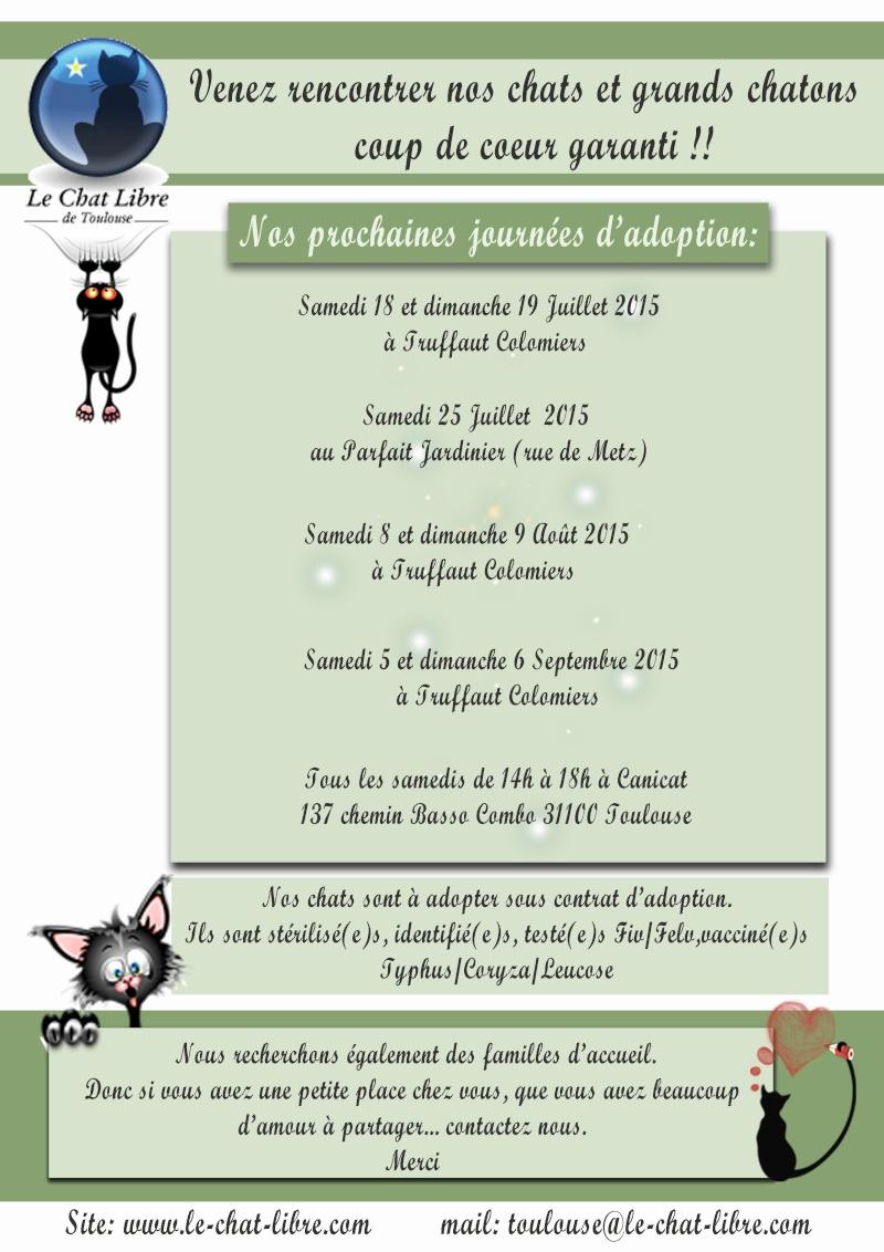 Le planning 2015 des journées adoption Journy11