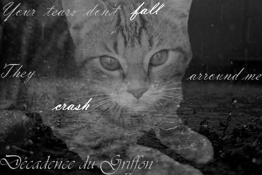 Décadence du Griffon || Liens & RPs 21631310