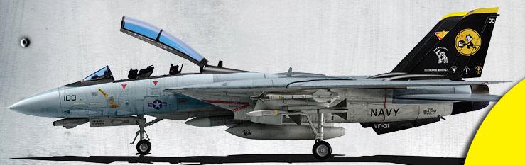 tomcat - F-14 Tomcat F-14_t10