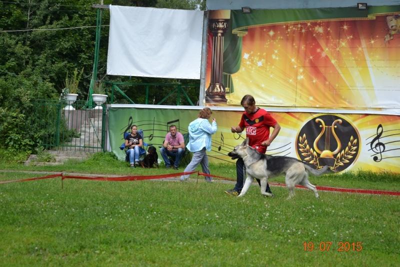 """19-07-2015 """"Кубок Звездного пса 2015"""" САС Dsc_0538"""