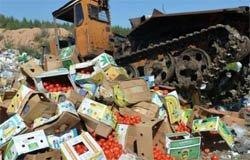 Курс на импортозамещение в Смоленском регионе 143
