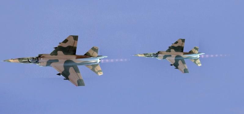 Mirage F1  AD / AZ Italeri 1/48 - Page 3 M110
