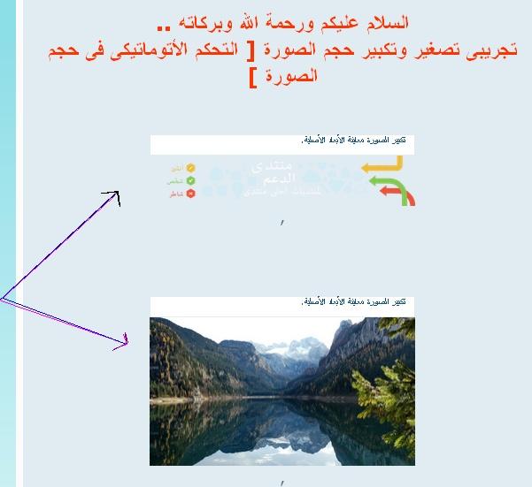 التحكم الأوتوماتيكي في حجم الصور في المساهمات 4474_b10