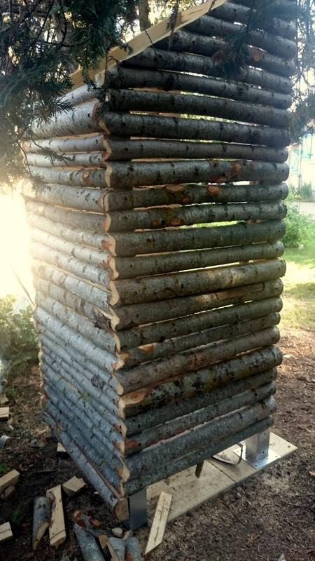Question aux boiseux, tourneurs de bois, et autres bidouilleurs de génie du bois Dsc_0044