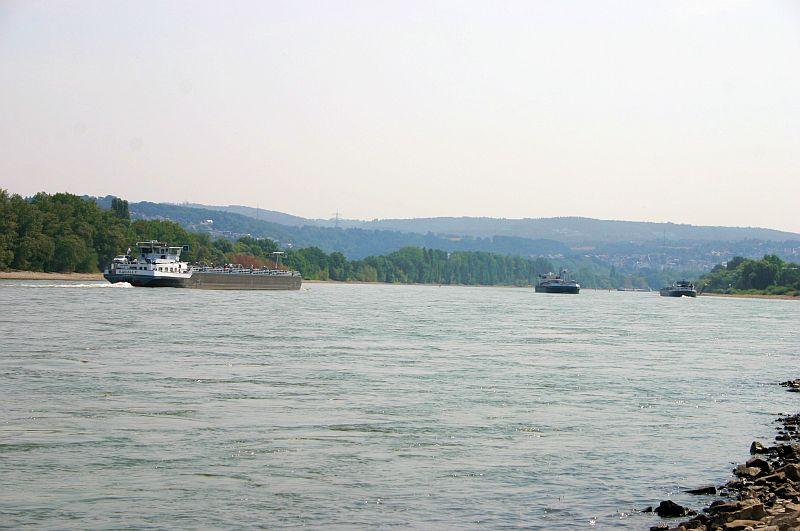 Kleiner Rheinbummel am 13.08.15 in Koblenz Kesselheim 1012