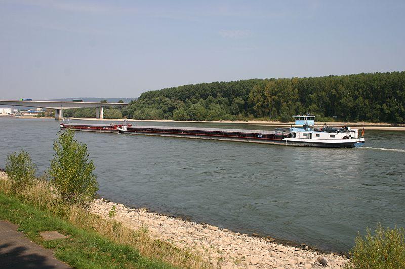 Kleiner Rheinbummel am 13.08.15 in Koblenz Kesselheim 13c10