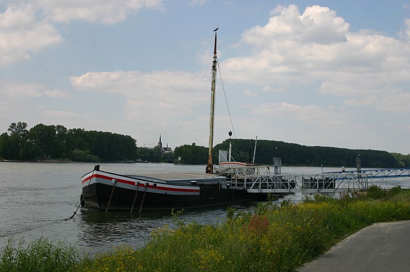 Kleiner Rheinbummel am 11.06.15 in Andernach und Mondorf 1410