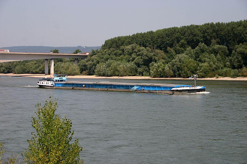 Kleiner Rheinbummel am 13.08.15 in Koblenz Kesselheim 1413