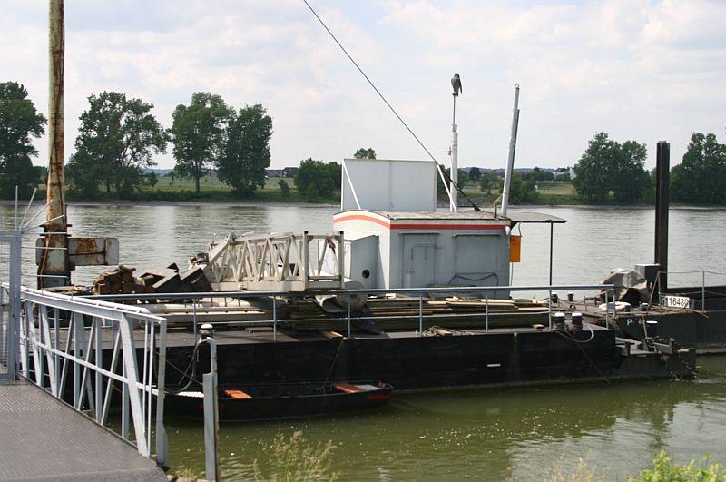 Kleiner Rheinbummel am 11.06.15 in Andernach und Mondorf 14a10