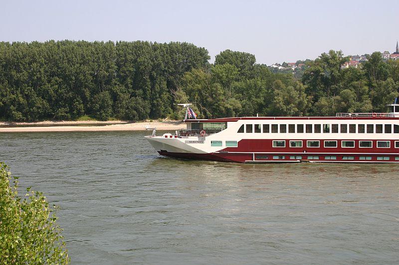 Kleiner Rheinbummel am 13.08.15 in Koblenz Kesselheim 15b11