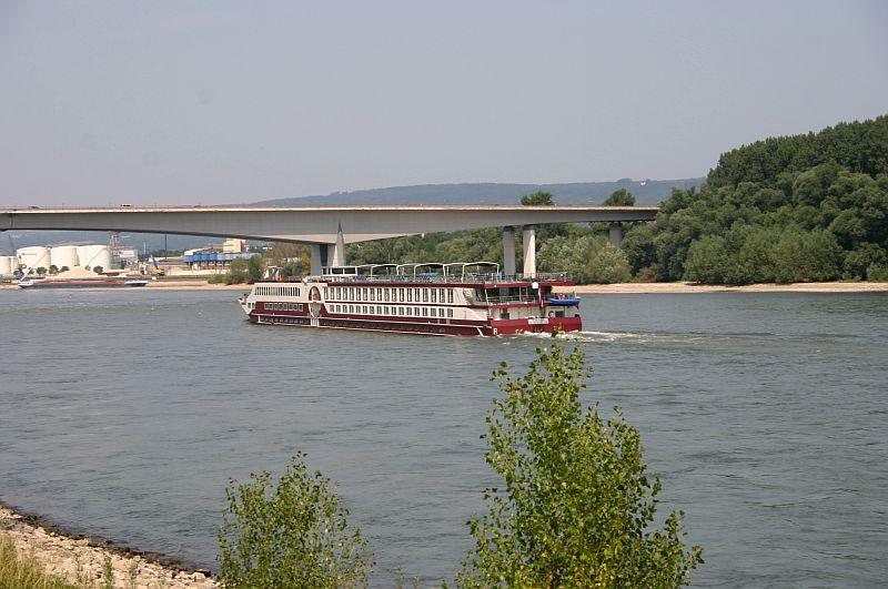 Kleiner Rheinbummel am 13.08.15 in Koblenz Kesselheim 15e10