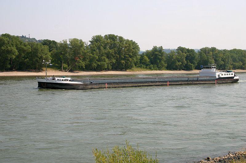 Kleiner Rheinbummel am 13.08.15 in Koblenz Kesselheim 1612