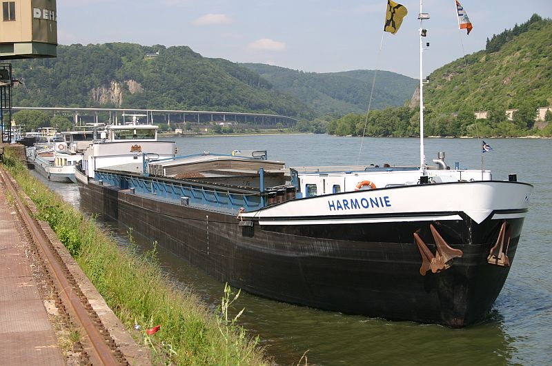 Kleiner Rheinbummel am 11.06.15 in Andernach und Mondorf 216