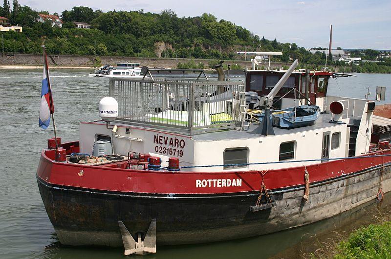 Kleiner Rheinbummel am 17.06.15 in Andernach und Koblenz 32a10
