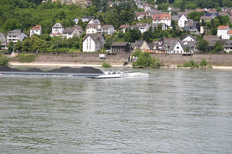 Kleiner Rheinbummel am 17.06.15 in Andernach und Koblenz 34a10