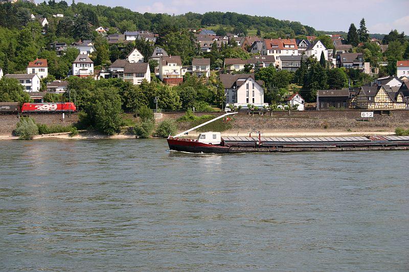 Kleiner Rheinbummel am 11.06.15 in Andernach und Mondorf 3a11