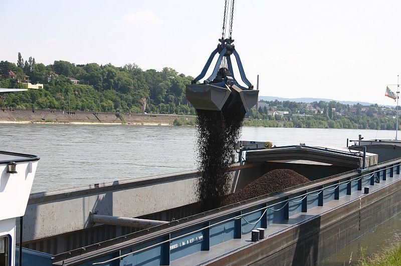 Kleiner Rheinbummel am 11.06.15 in Andernach und Mondorf 3h10