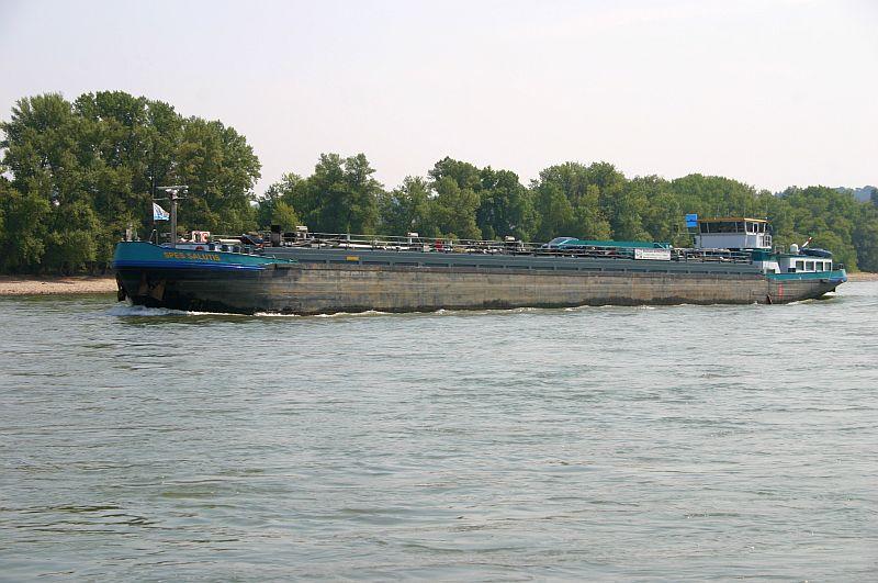 Kleiner Rheinbummel am 13.08.15 in Koblenz Kesselheim 625