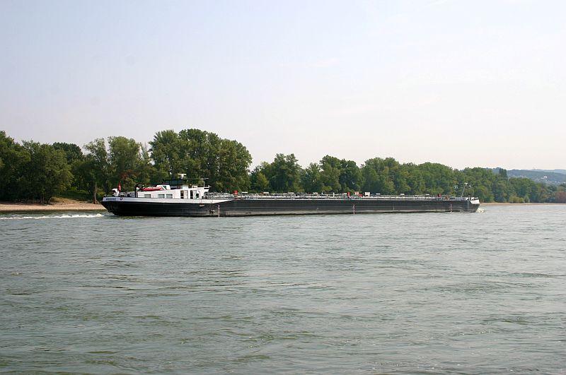 Kleiner Rheinbummel am 13.08.15 in Koblenz Kesselheim 8c11