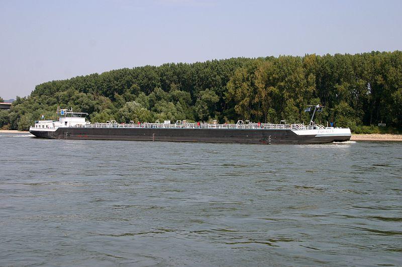 Kleiner Rheinbummel am 13.08.15 in Koblenz Kesselheim 915