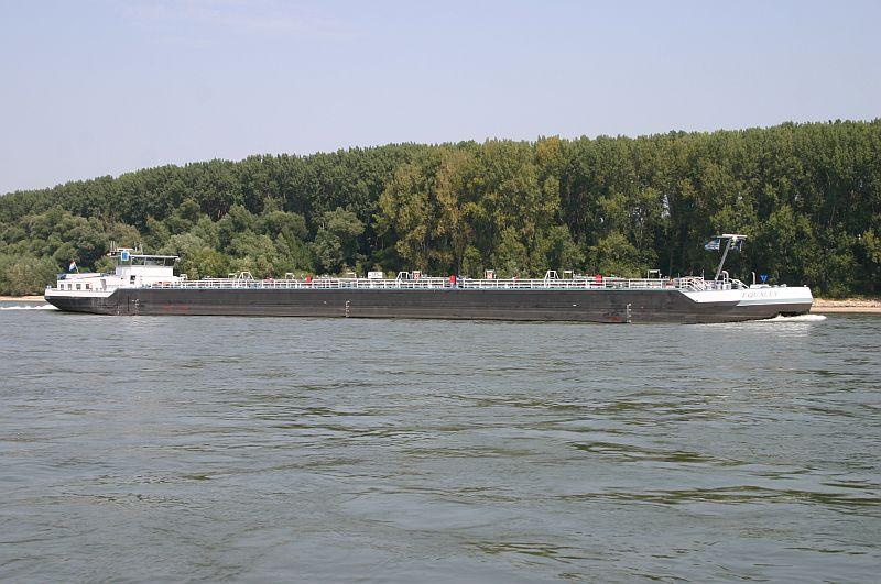 Kleiner Rheinbummel am 13.08.15 in Koblenz Kesselheim 9a11