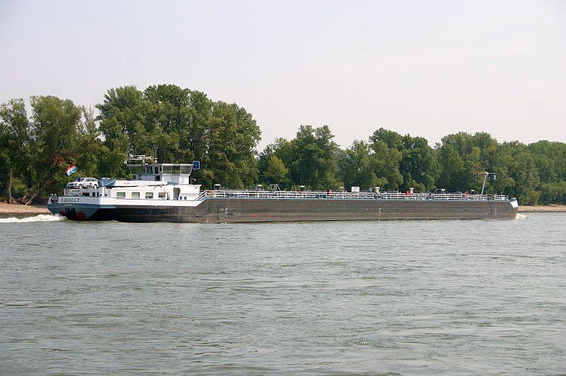Kleiner Rheinbummel am 13.08.15 in Koblenz Kesselheim 9c11