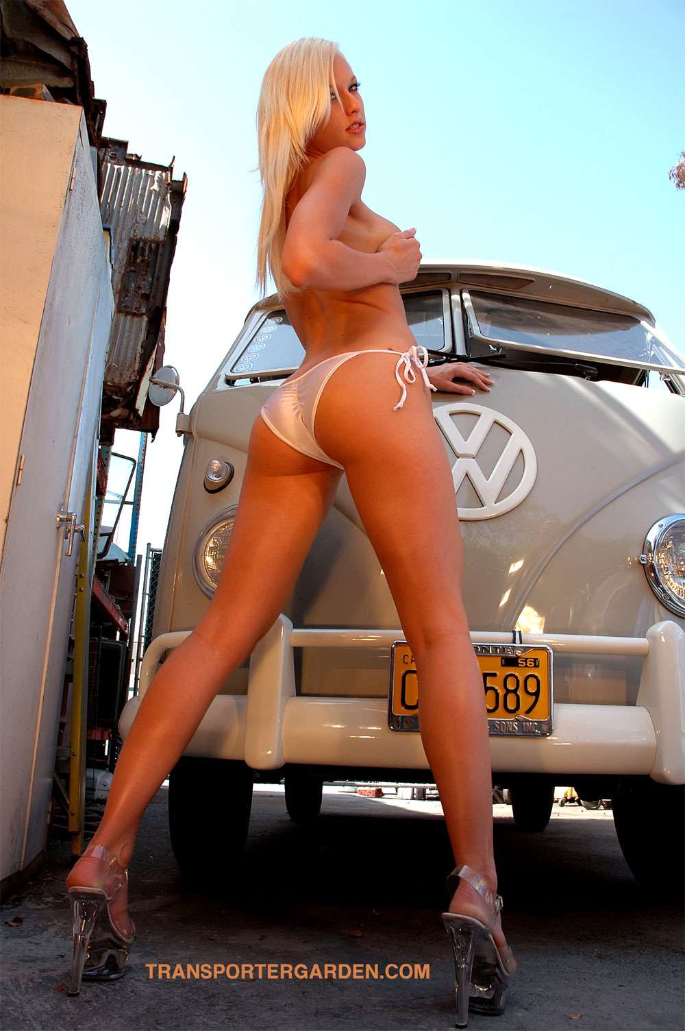 VW AIRCOOLED - Page 6 2811710