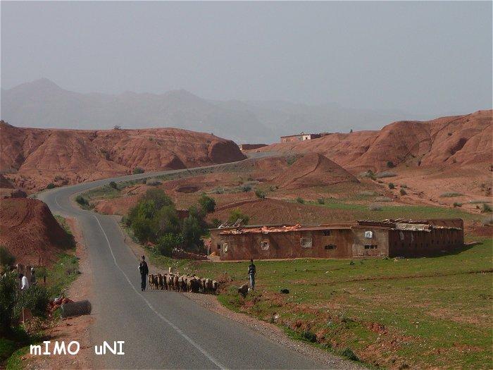 desenclavement de tamazirte ,Les Routes de l'Atlas Marocain Route_10