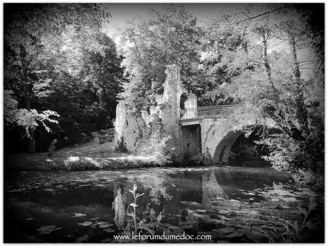 Parc de Majolan à Blanquefort vu par Forum du Médoc Img_6712
