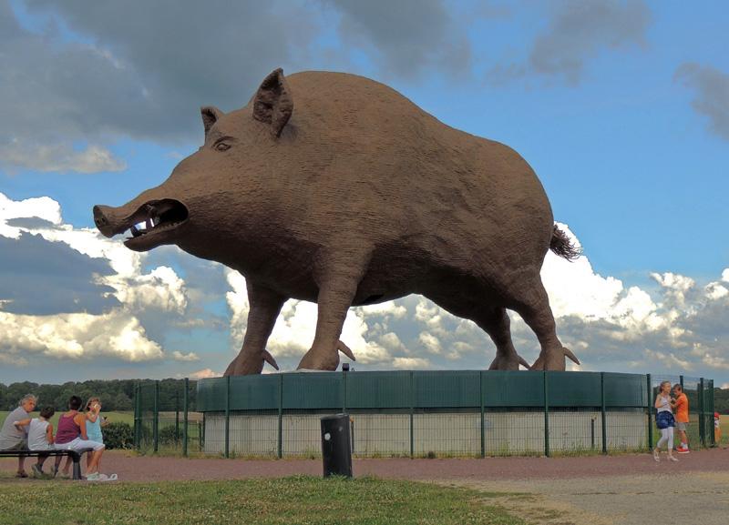 Woinic, le plus gros sanglier de France (et du monde) - Saulces-Monclin - Ardennes - France 11120410