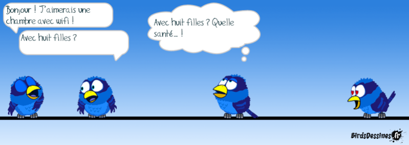 Les Birds - Page 12 14334010