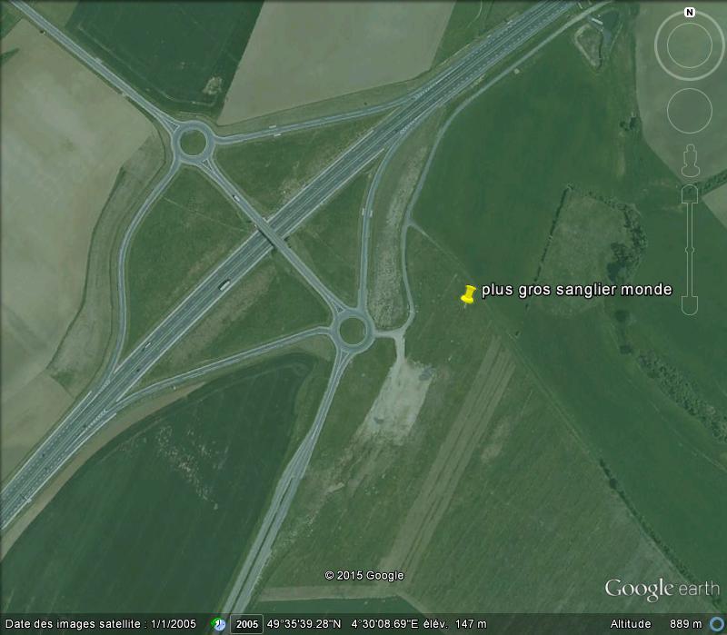 Woinic, le plus gros sanglier de France (et du monde) - Saulces-Monclin - Ardennes - France C10