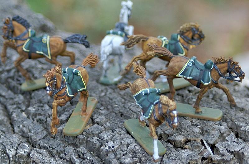 4° regiment de chasseurs Dsc04554