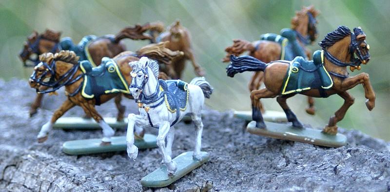 4° regiment de chasseurs Dsc04555